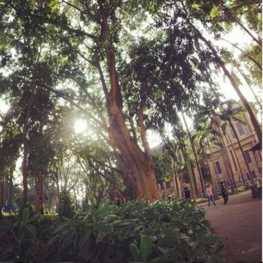 Parque da Luz e Pinacoteca