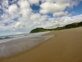 Praia do Silveira - Costão Sul